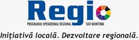 Regio Initiativa locala. Dezvoltare regionala